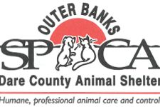 Dare County ANIMAL SHELTER