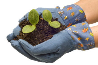 Tri-County Home and Community Gardening Workshop, March 18