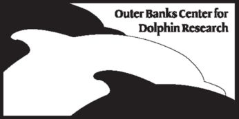 OBXDolphins Volunteer Feb 26