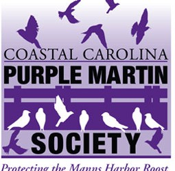 Slow Down for Purple Martins