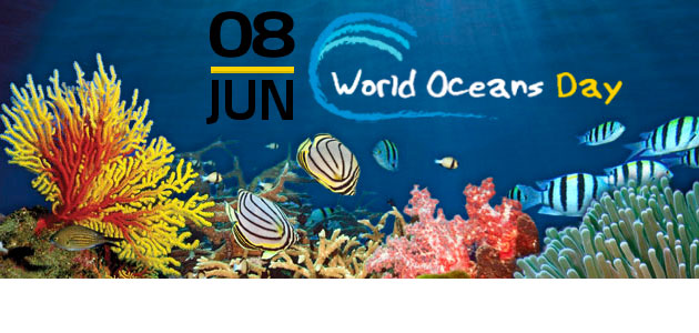 world oceans day   outer banks commongood