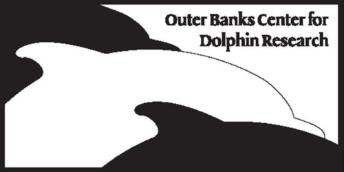 Outer Banks Center for Dolphin Research Volunteer