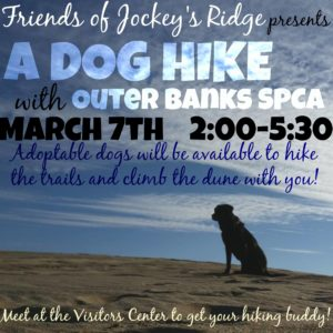 Dog Hike March 7