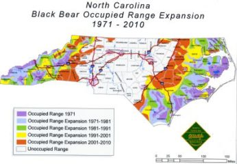 Roaming Bear? Caution But Don't Be Alarmed : Coastal Review Online