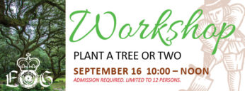 09-16-17 Plant a Tree or Two