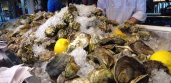 Oysters 101 – from OBX Tourist Bureau