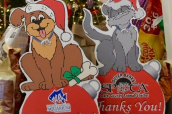 Santa Paws Pet Supply Drive