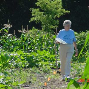 Becoming a Master Gardener in Dare or Currituck County